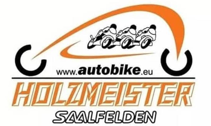 Logo Holzmeister